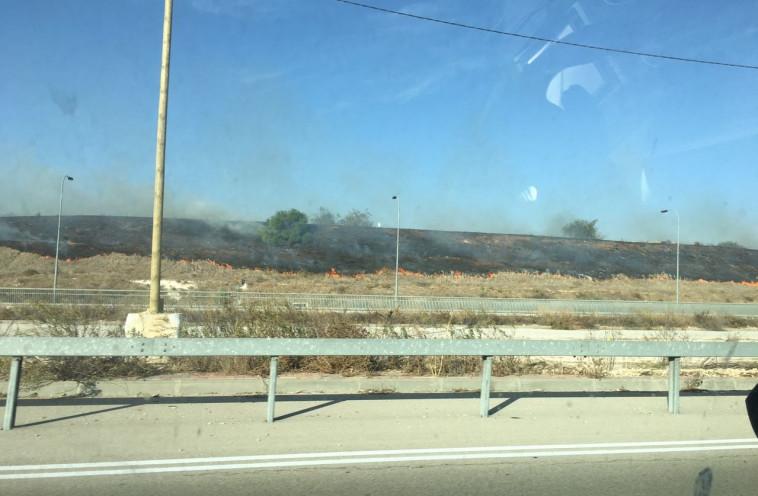 אש סמוך לכביש 431. צילום: איחוד הצלה