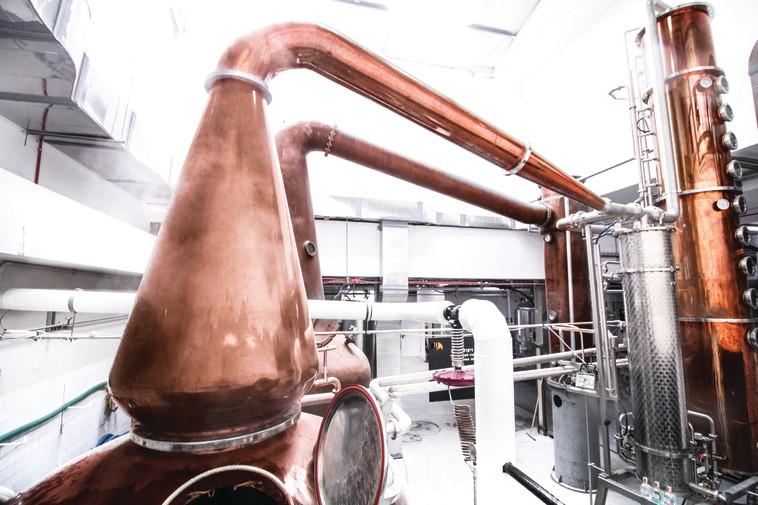 מרכז המבקרים של מזקקת הוויסקי ''מילקאנד האני'', אלכוהול (צילום: יפעת זוהר)