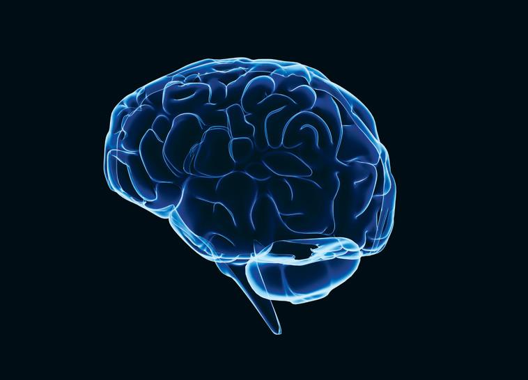 דרך מהנה לשמור על צלילות המוח בכל גיל. אינגאימג