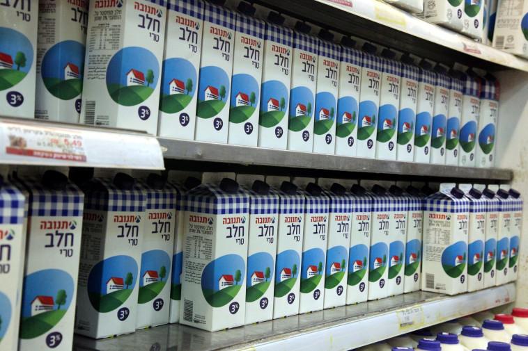 חלב (צילום: נאור רהב)