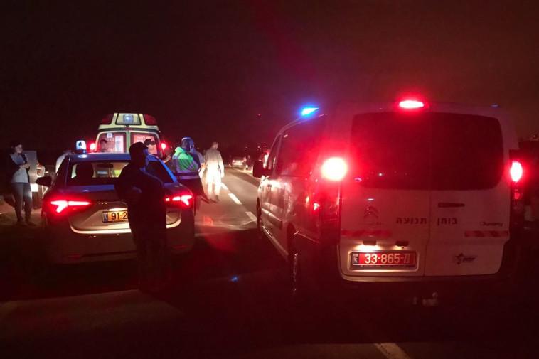 כוחות ההצלה והשוטרים באזור התאונה. צילום: דוברות המשטרה