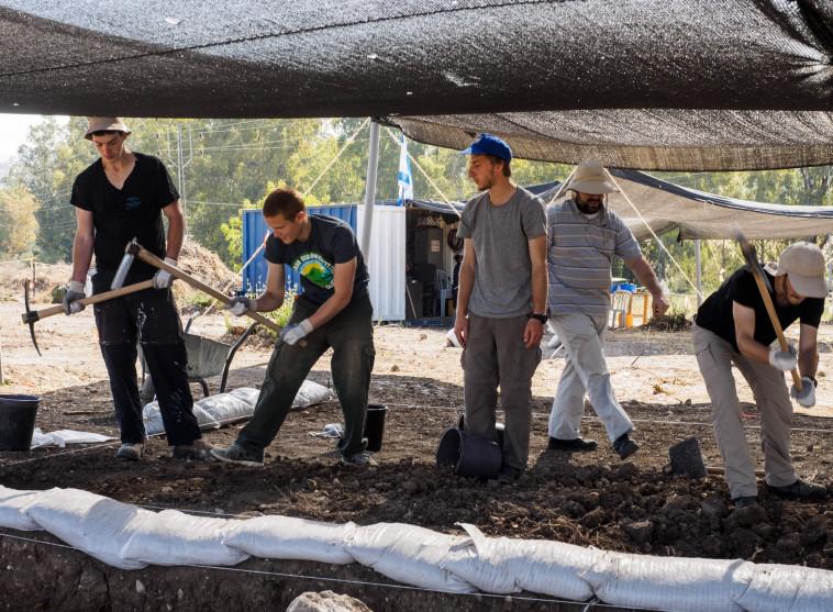 חניכי המכינות הקדם צבאיות מסייעים בחפירות ליד בית שמש. צילום: אסף פרץ, באדיבות רשות העתיקות