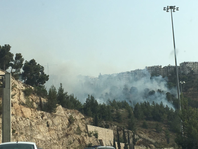 השריפה בליפתא. צילום: מיקי בנימין/TPS
