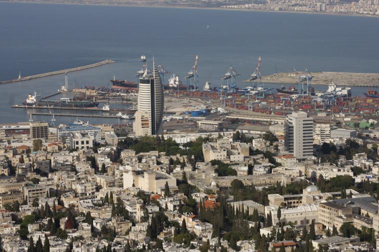 אבו כליב (חיפה) - כל מה שזז בעיר. צילום: דניאל דרייפוס, פלאש 90