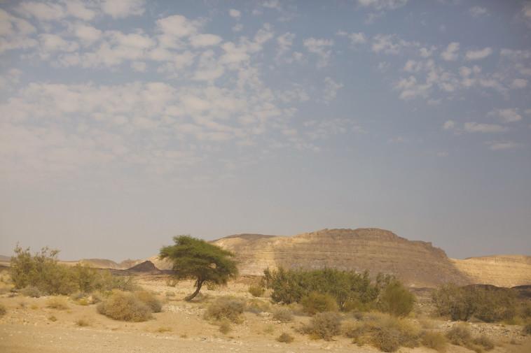 אזור מצפה רמון (צילום: ליאור מזרחי, פלאש 90)