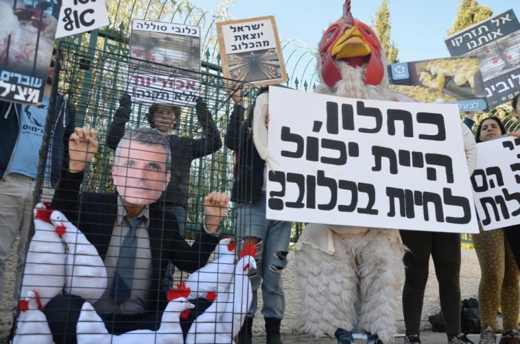 הפגנה נגד הרפורמה. צילום: אנונימוס