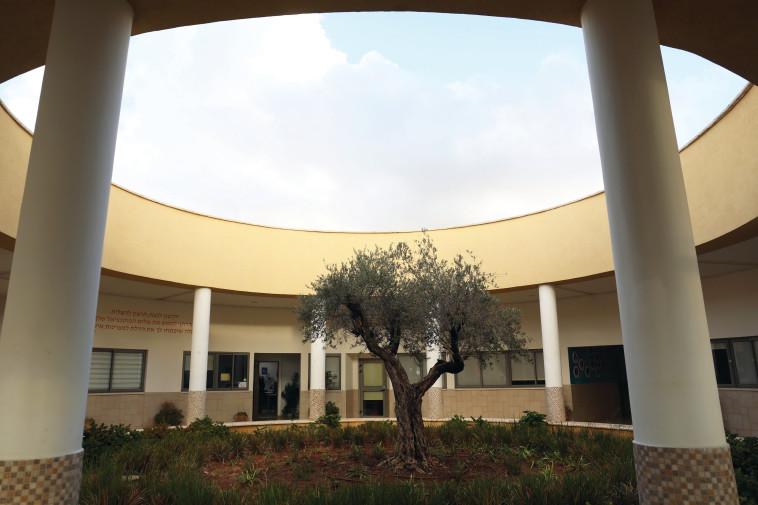 """חטיבת הביניים """"לבונה"""". צילום: אריאל בשור"""