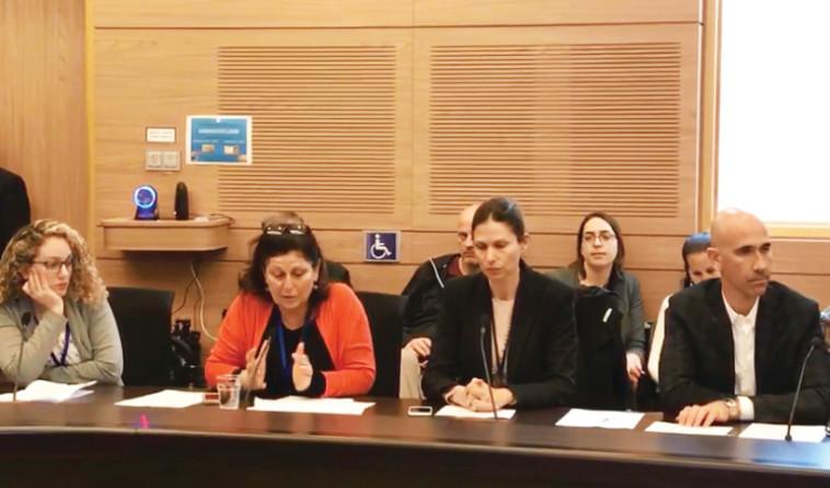 אפל בוועדת העבודה, הרווחה והבריאות של הכנסת. צילום: באדיבות עמותת מרכז טל