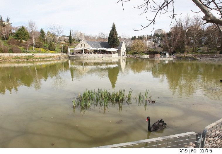 הגן הבוטני - צילום סיון פרג' - יחצ 11