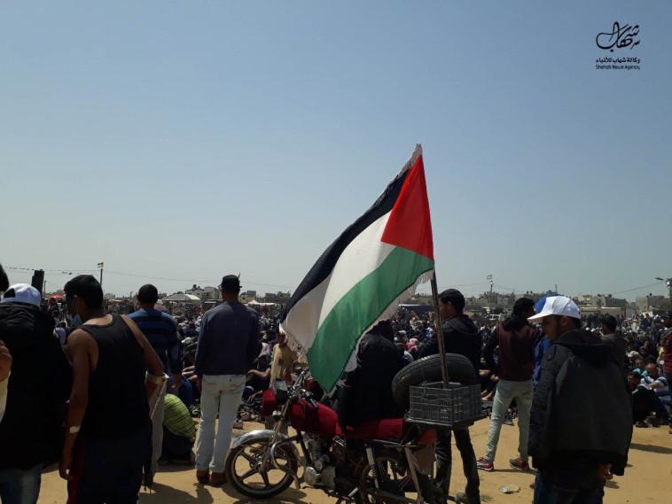 סיום הצעדות בתמורה לפתיחת מעבר רפיח. צילום: רשתות ערביות