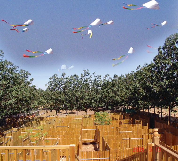 """עפיפונים בפארק דרך העץ. יח""""צ"""