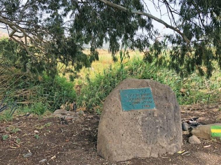 קבר שמעון הצדיק. צילום: מיטל שרעבי