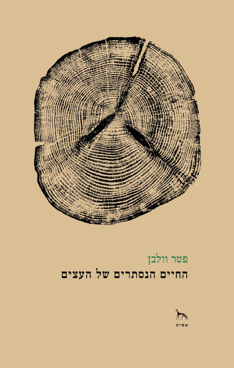 החיים הנסתרים של העצים. כריכת הספר