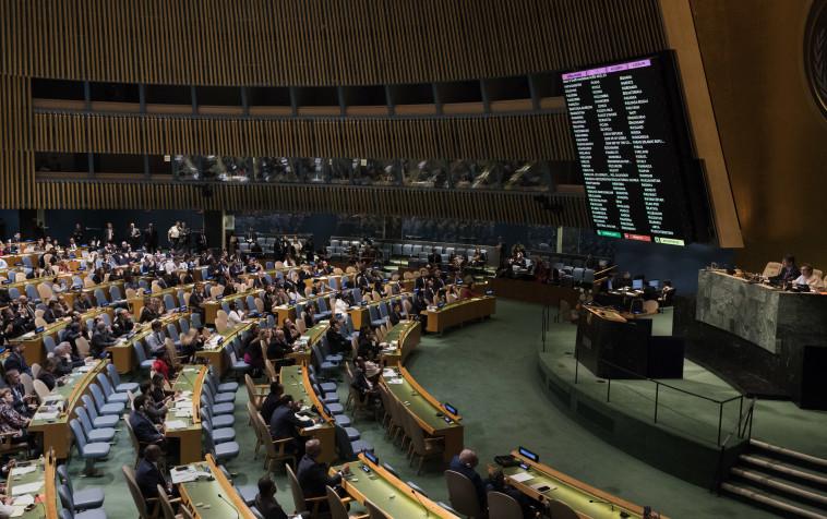 """עצרת האו""""ם, צילום: AFP"""