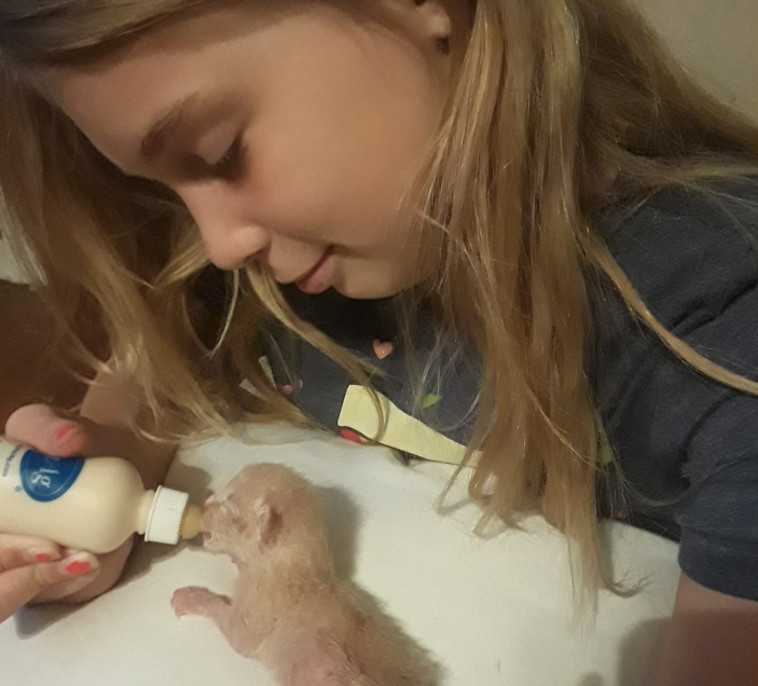 רצתה להקדיש את כל חייה להצלת בעלי חיים. גרינלי מארי