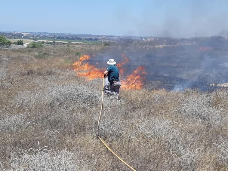 שריפה בעוטף עזה. צילום: רשות הטבע והגנים, קובי סופר