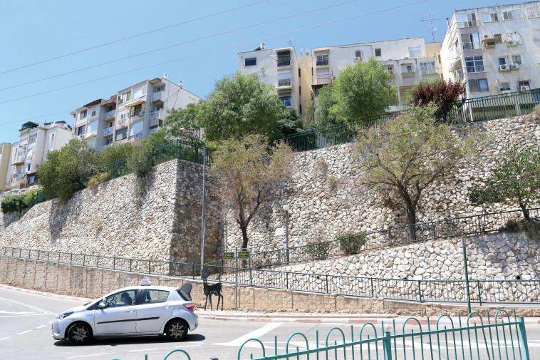 """""""עיר שהיא אבן חן"""". יקנעם עילית. צילום: ערן לוף"""