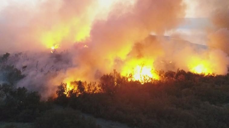 השריפה בשמורת עינות צוקים. צילום: עמיר אלוני, רשות הטבע והגנים