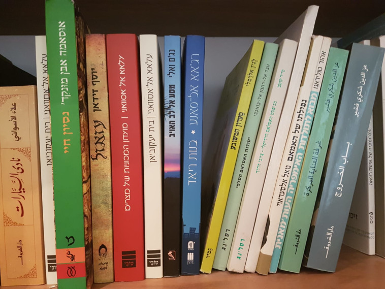מדף ספרים (צילום: ללא)