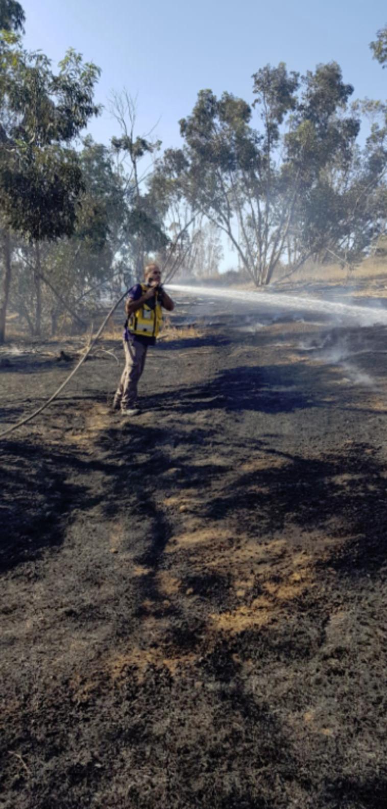 """שריפה ביער כיסופים. צילום: בני רובינוב, קק""""ל"""