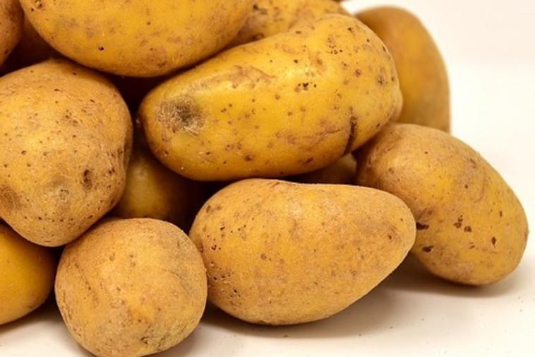 תפוחי אדמה (צילום: Pixabay)