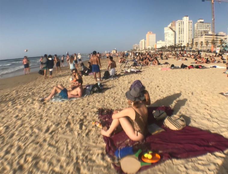 חוף הים בתל אביב. צילום: אבשלום ששוני