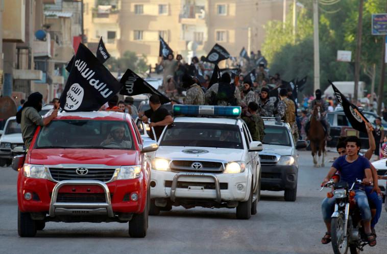 פעילי דאעש בסוריה. צילום: רויטרס