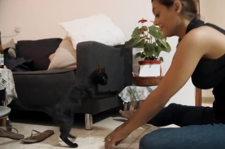 דיקלה והחתולה של אלון. צילום מסך