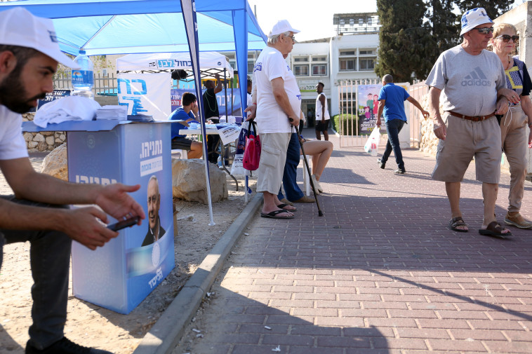 בחירות באשקלון (צילום: אריאל בשור)