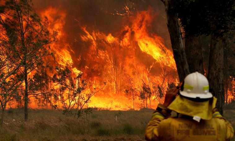 שריפה באוסטרליה. צילום: רויטרס