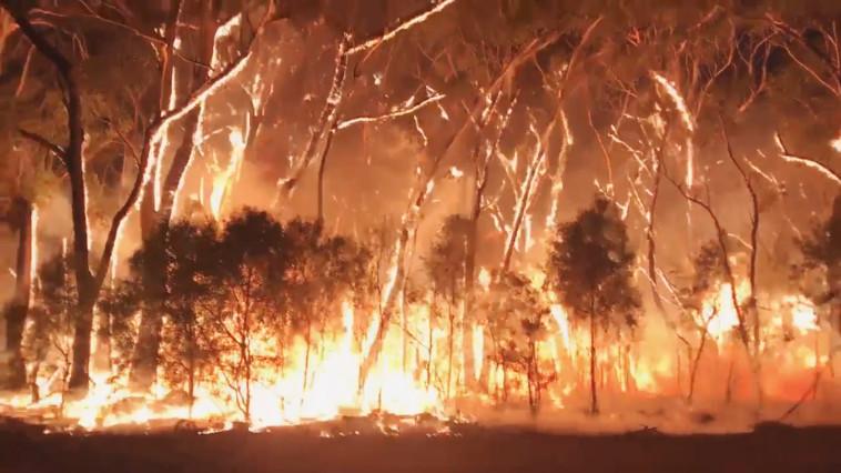 שריפות באוסטרליה, צילום: רויטרס