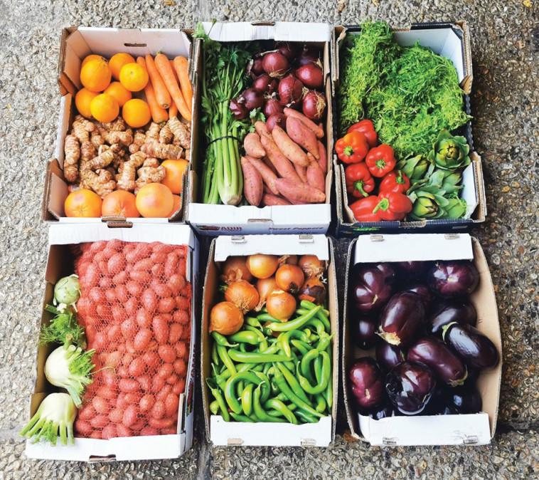 """ירקות בלי פלסטיק במסעדת """"אייבי"""". צילום: פרטי"""