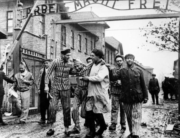 שחרור אושוויץ. מתוך ויקיפדיה