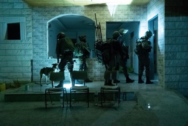 כוחות צה''ל בג'נין (צילום: דובר צה''ל)