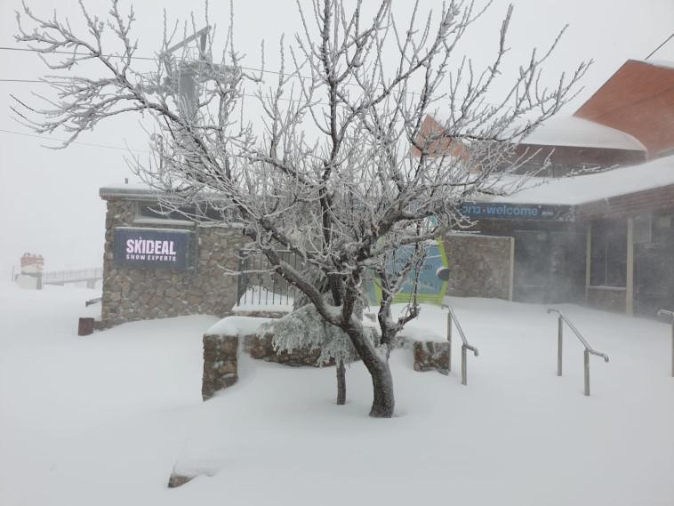 שלג בהר החרמון (באדיבות אתר החרמון)