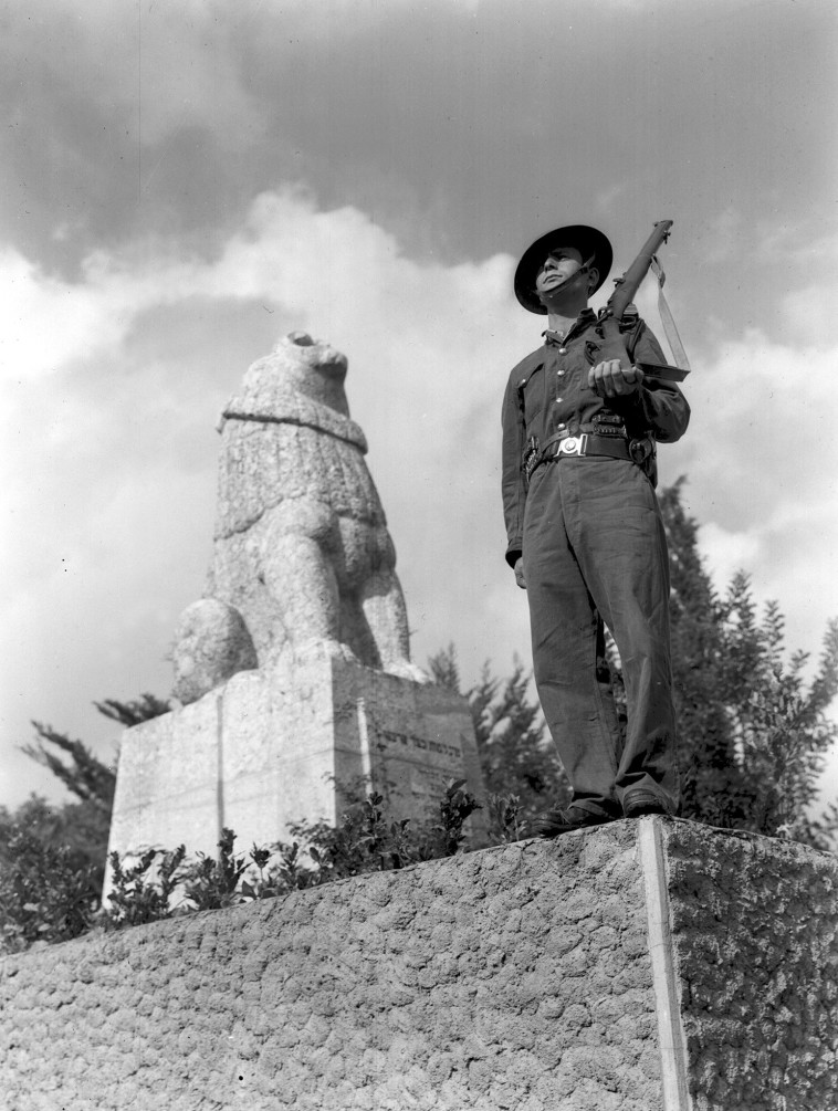פסל האריה השואג, צילום: זולטן קלוגר