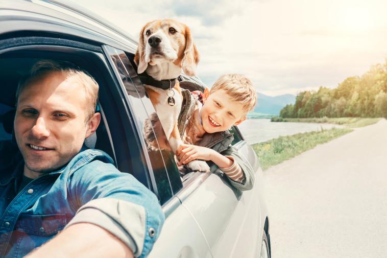 רכב חדש (צילום: Shutterstock)