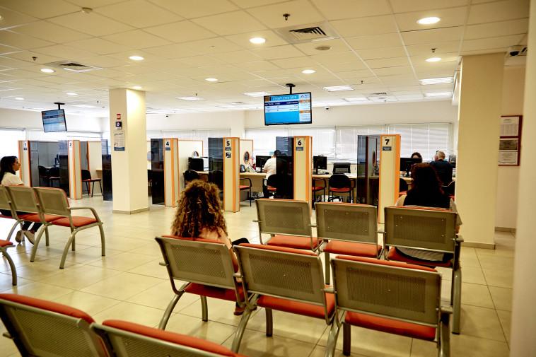 שירות התעסוקה (צילום: באדיבות שירות התעסוקה)