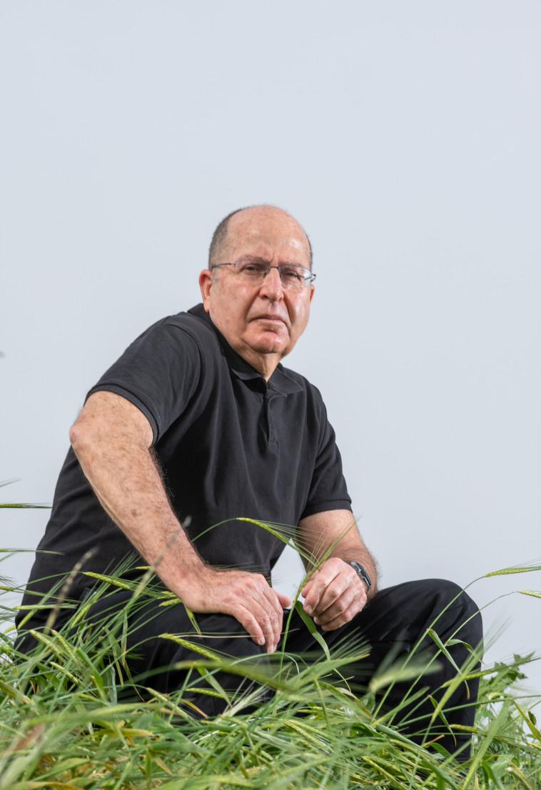 משה בוגי יעלון (צילום: יוסי אלוני)