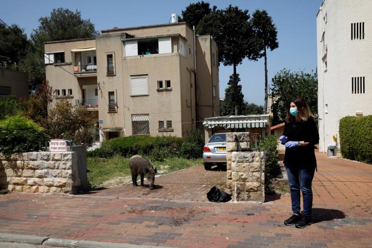 קורונה בישראל (צילום: רויטרס / רונן זבולון)