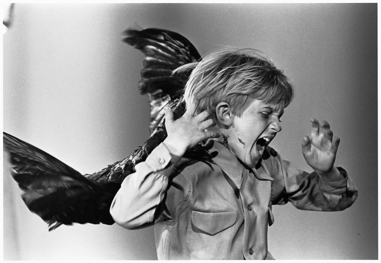 מתוך הסרט ''הציפורים''  (צילום: באדיבות יס)