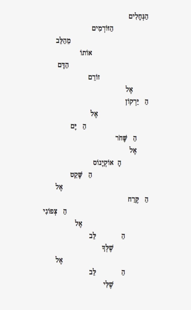שירה גראפית - מאת שירה חורש (צילום: ארכיון פרטי)