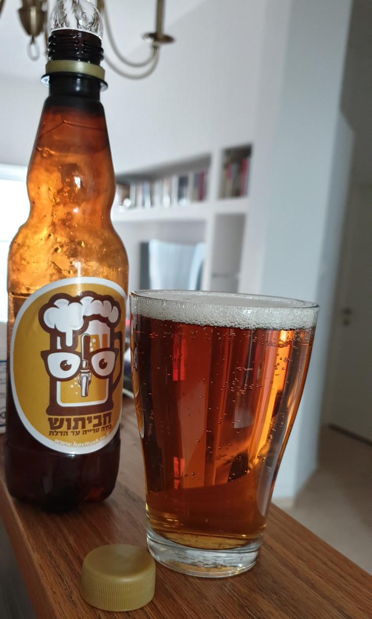 בירה חביתוש (צילום: ניר קיפניס)