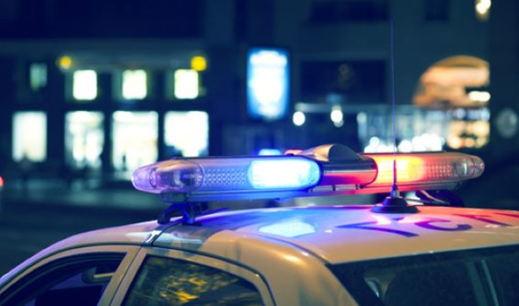 ניידת משטרה (צילום: שאטרסטוק)