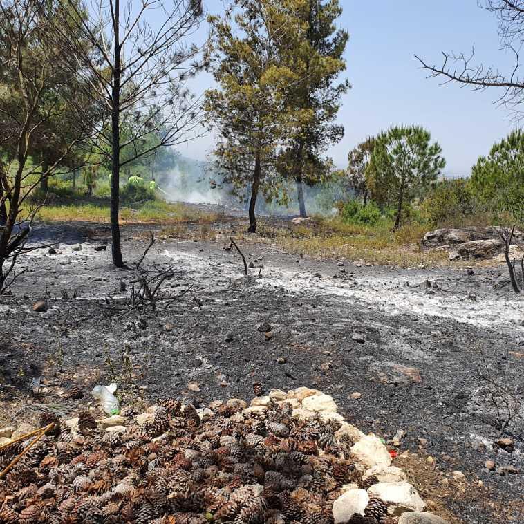 השריפה ברכס משלטים  (צילום: גידי בשן, קק''ל )