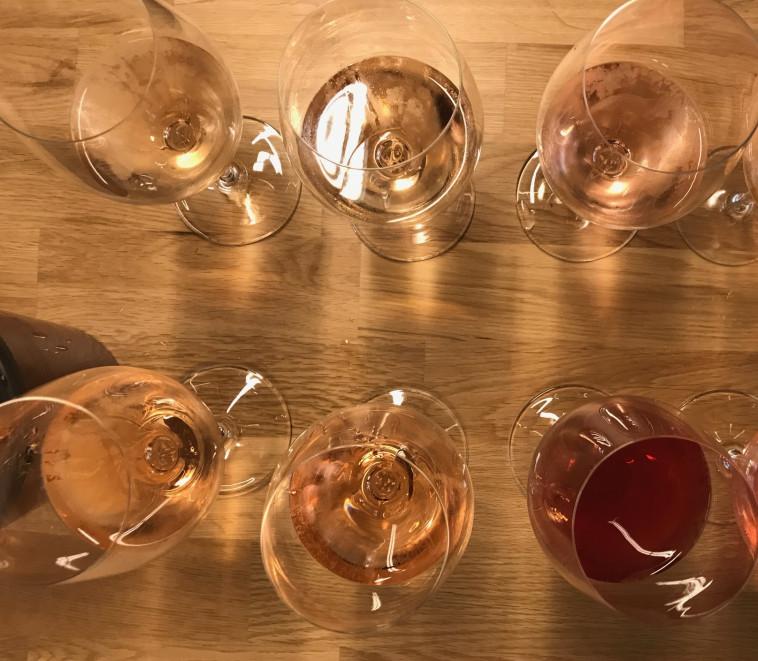 טעימת יינות לבנים ורוזה  (צילום: יאיר גת )