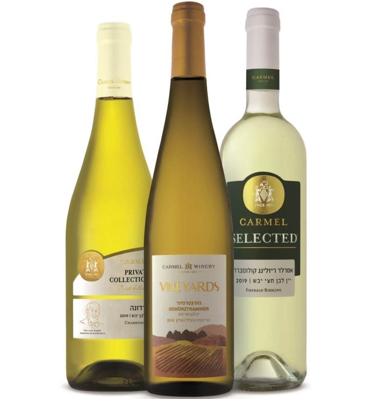 כרמל,יינות לבנים לשבועות  (צילום: אייל קרן)