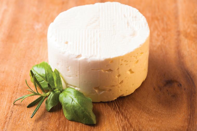 גבינה בולגרית (צילום: אינג אימג')