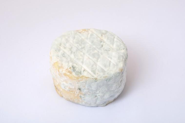 גבינת עיזים מיושנת (צילום: אינג אימג')
