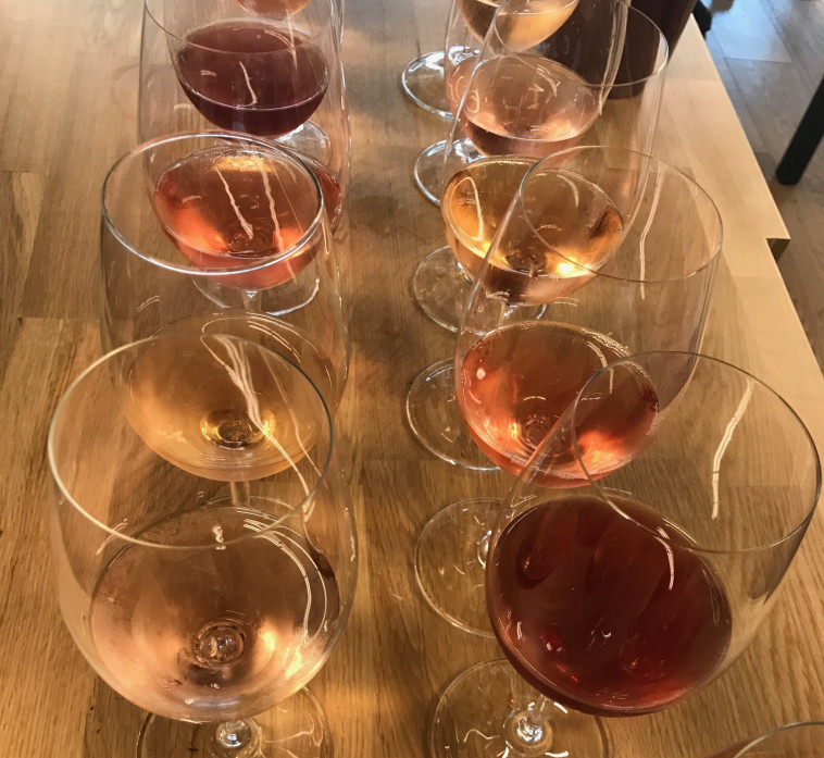 טעימת רוזה בכל הצבעים  (צילום: סנהדרינק)